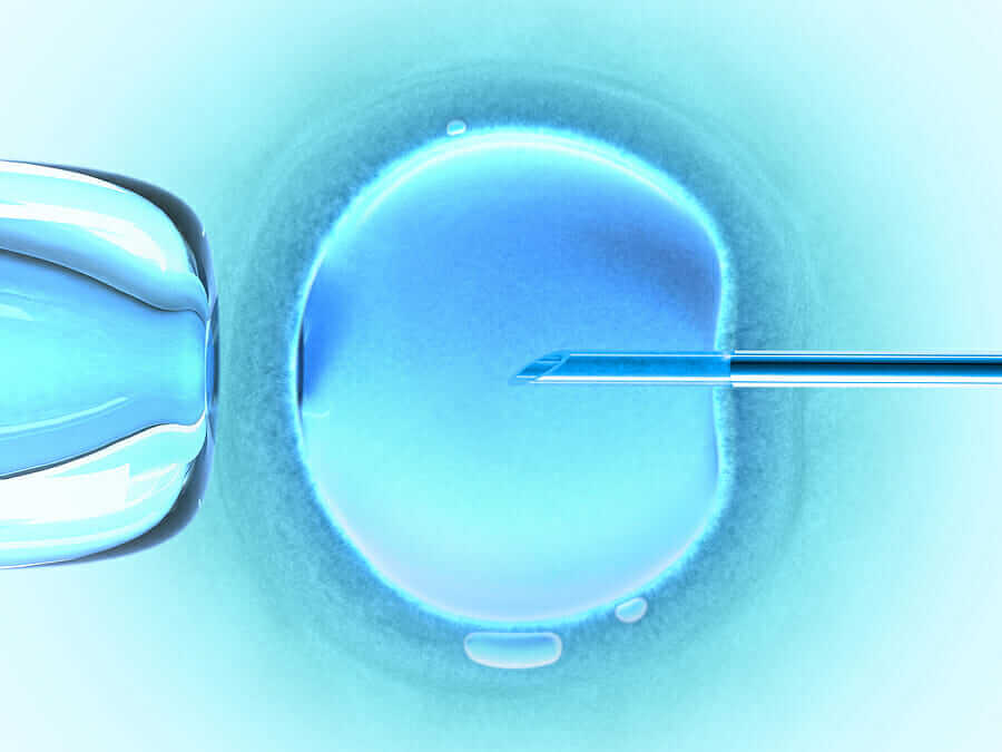 IVF India – Indians View towards IVF Treatment