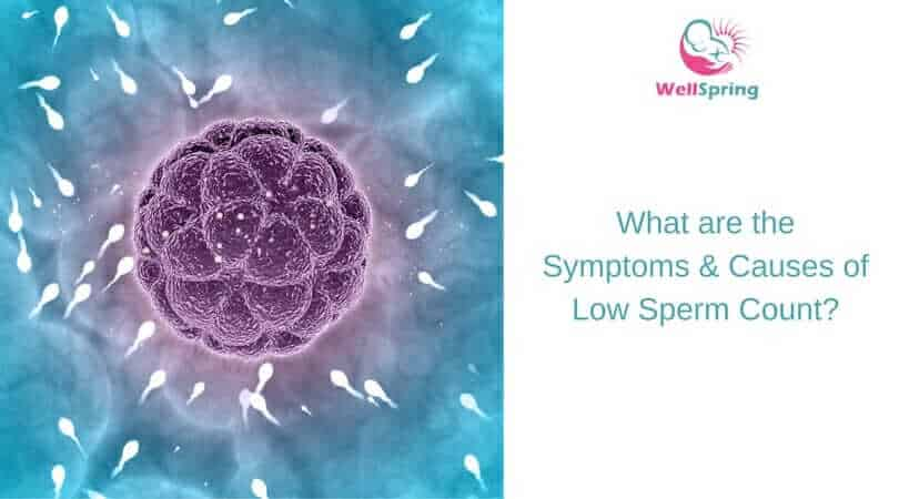 What are the Symptoms & Causes of Low Sperm Count?